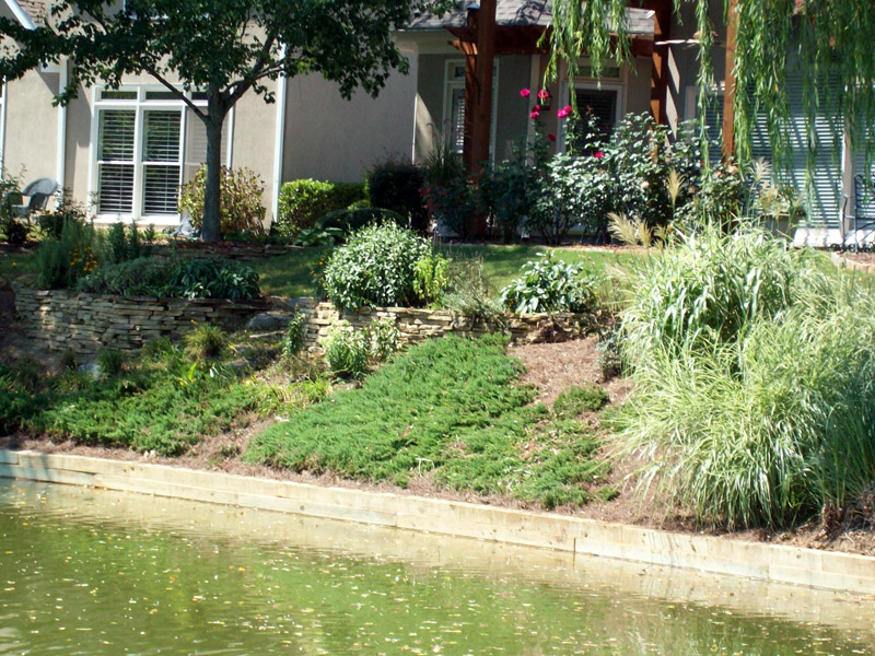 Front yard landscaping ideas on a slope images - Landscape ideas for a slope ...